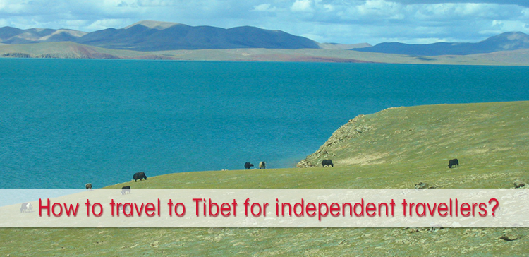 How to travel to Tibet as a solo traveller? I have some answers on how to travel to Tibet by train independently.