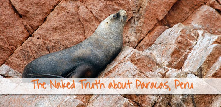 How long to stay in Paracas Peru? The Naked Truth about Paracas (that Nobody talks about)