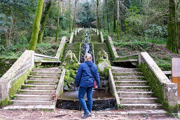 Bussaco Forest Portugal - Fonte Frio Fountain
